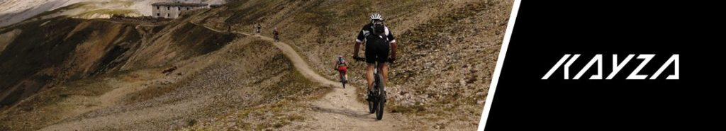 Pedelecs Trekking MTB